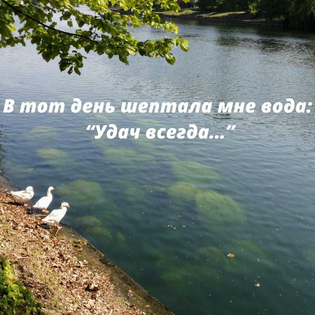 """В тот день шептала мне вода: """"Удач всегда…"""""""